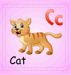 Animals alphabet c is for cat vector