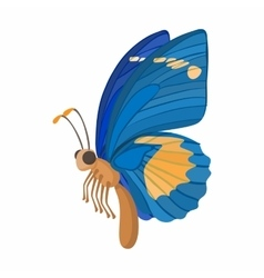 Blue butterfly icon cartoon style vector