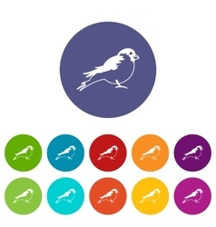 Bullfinch set icons vector image