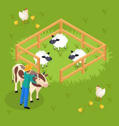 Cattle farming isometric composition vector