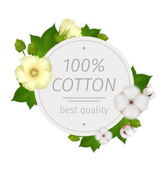 Cotton flower round composition vector
