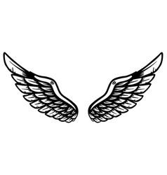 Hand drawn eagle wings isolated on white vector