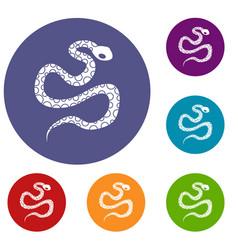 python snake icons set vector image