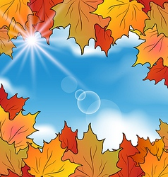 Autumn leaves maple sky clouds vector