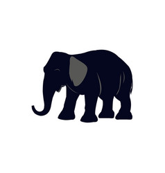 Cartoon of elephant icon for vector