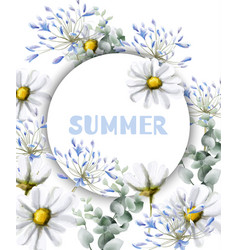 chamomile summer card watercolor vintage vector image