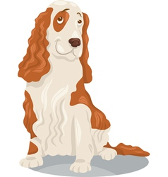 cocker spaniel dog cartoon vector image