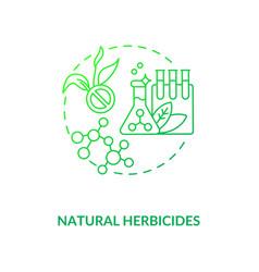 Natural herbicides concept icon vector