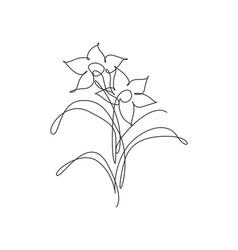one continuous line drawing beautiful abstract vector image