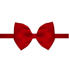 red gift bow of ribbon vector image