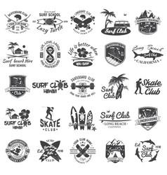 set skateboard longboard and surf club badges vector image