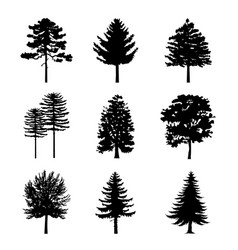 Tree black silhouettes nature forest vector