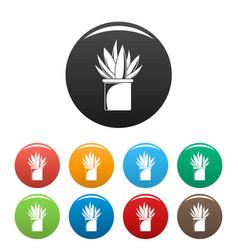 aloe cactus pot icons set color vector image