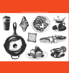 engraved style breakfast food and drinks vector image