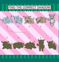 Find correct shadow cartoon cute rhino vector