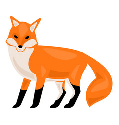 forest fox icon cartoon style vector image