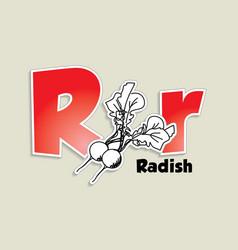 Fruits and vegetables alphabet - letter R vector