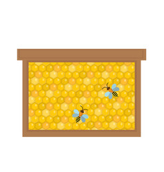 honeycomb in wooden frame icon flat style vector image