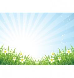 Spring meadow beautiful vector