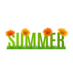 summer typographic banner with flowers for design vector image vector image