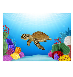 Cartoon of Turtle with beautiful underwater vector image vector image