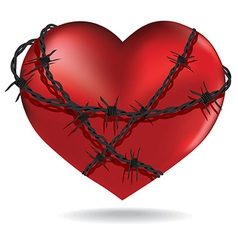 Red heart with barbed metal wire vector image vector image