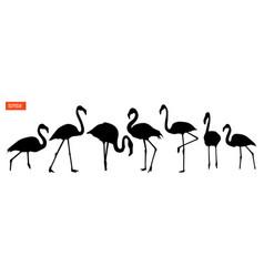 set of silhouettes of flamingo birds vector image