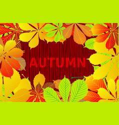 Autumnal leaf of chestnut vector
