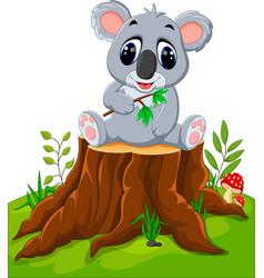 Cartoon koala posing on tree stump vector