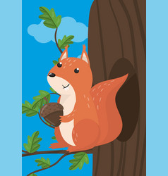 cute squirrel with woodland vector image