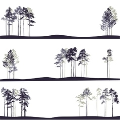 set of different landscapes with pine trees vector image