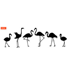 Set of silhouettes of flamingo birds vector