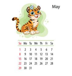 Tiger wall calendar design template for may 2022 vector