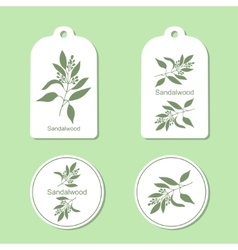 Sandalwood tree branch Tags and Labels vector image vector image