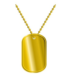 Golden Badge soldier Army Medallion for rich of vector image