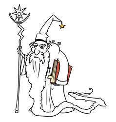 Cartoon medieval fantasy wizard sorcerer or royal vector