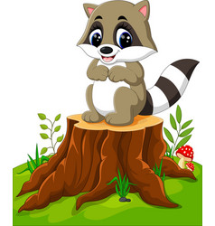 Cartoon racoon posing on tree stump vector