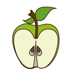 Colorful cartoon slice green apple fruit food vector