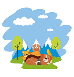 dog cat hamster rabbit and bird loutdoors vector image