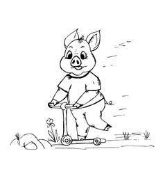 doodle cute pig riding a scooter vector image