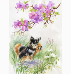 hand drawn dogs on the nature watercolor vector image