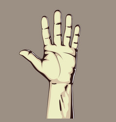 Hand showing five count vector