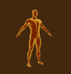 Standing man isolated on brown background vector
