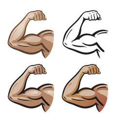 Strong male arm hand muscles biceps icon vector