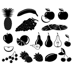 Set icons of fruit vector image