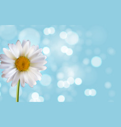 Spring and summer flower natural background vector