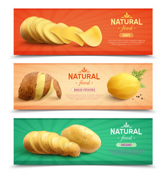 natural food realistic horizontal banners vector image