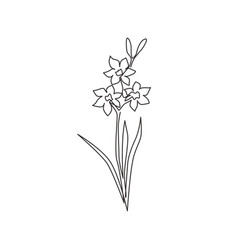 one continuous line drawing beauty fresh vector image