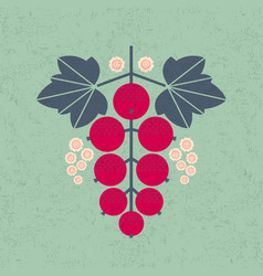 Ripe red currant leaves flowers shabb vector