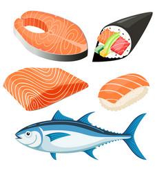 Salmon fillet vector